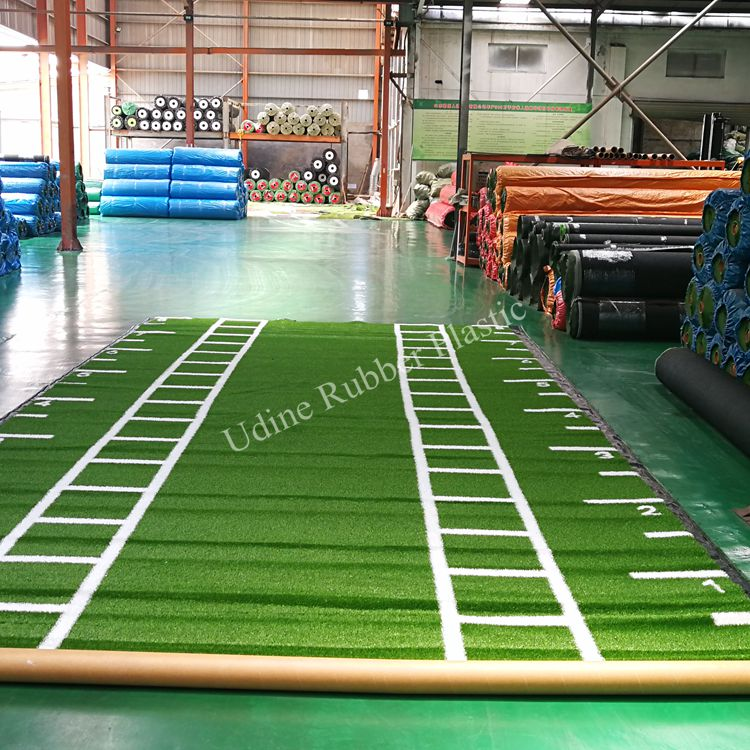 25mm Height Artificial Gym Turf for Sled Track 4M×8M